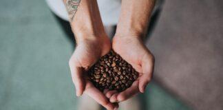 Ziarnista kawa na dłoniach młodego mężczyzny, który ma tatuaż na przedramieniu.